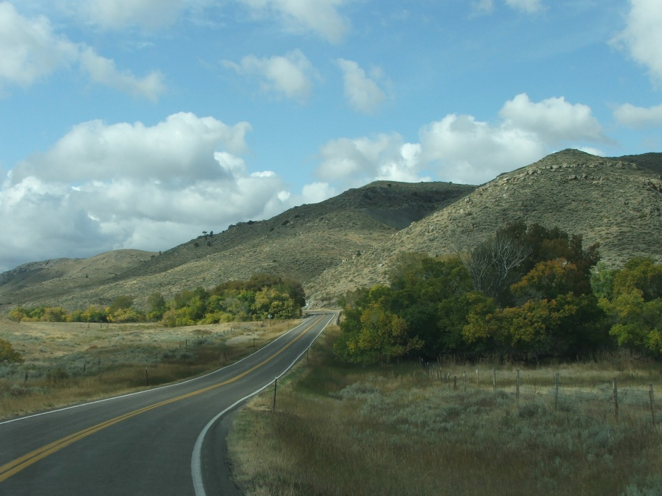 The only trees in Wyoming