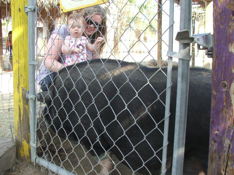 Violet with a BIG Pig